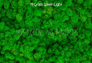 Chrobotek reniferowy - 15g - 79 Grass Green Light